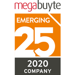 Megabuyte Emerging 25 2020 award badge